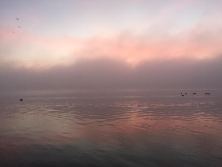 Foggy sunrise over Otay Lakes, Chula Vista Olympic Training Center.